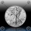 """1oz ZDA $1 """"Eagle"""" 2013"""